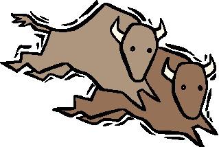 bufalo-hareketli-resim-0065