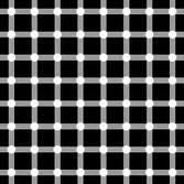 illuzyon-hareketli-resim-0106