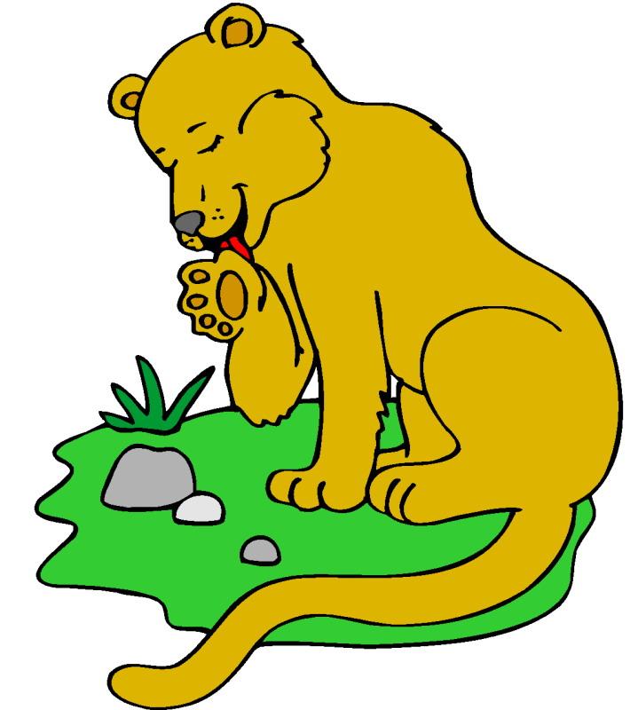 aslan-hareketli-resim-0103