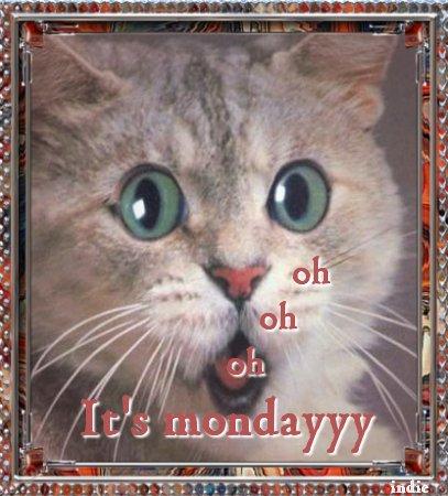 pazartesi-hareketli-resim-0026