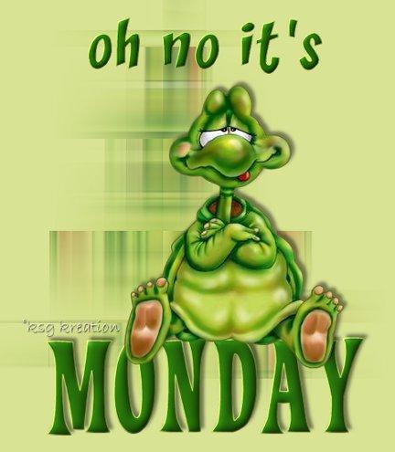 pazartesi-hareketli-resim-0035