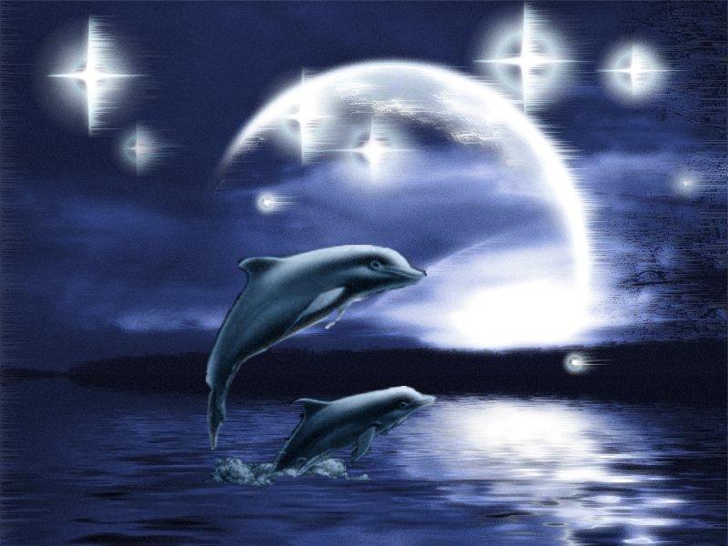 deniz-ve-okyanus-hareketli-resim-0003