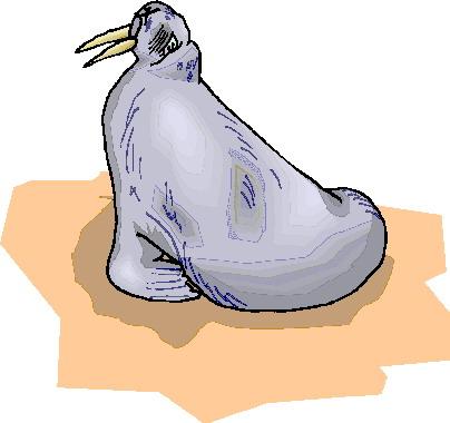 mors-ve-deniz-aygiri-hareketli-resim-0008