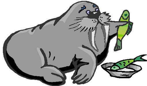 mors-ve-deniz-aygiri-hareketli-resim-0031