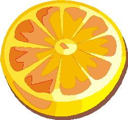 portakal-hareketli-resim-0024
