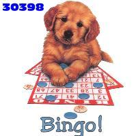 bingo-ve-tombala-hareketli-resim-0025